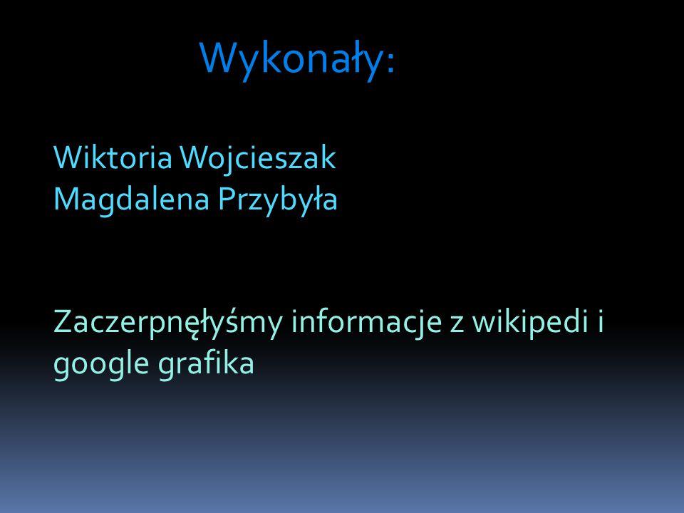Wykonały: Wiktoria Wojcieszak Magdalena Przybyła Zaczerpnęłyśmy informacje z wikipedi i google grafika