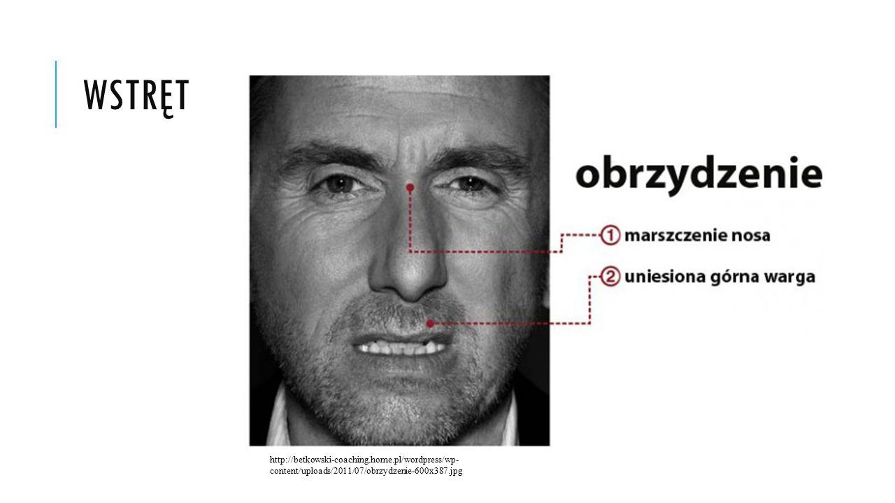 WSTRĘT http://betkowski-coaching.home.pl/wordpress/wp- content/uploads/2011/07/obrzydzenie-600x387.jpg