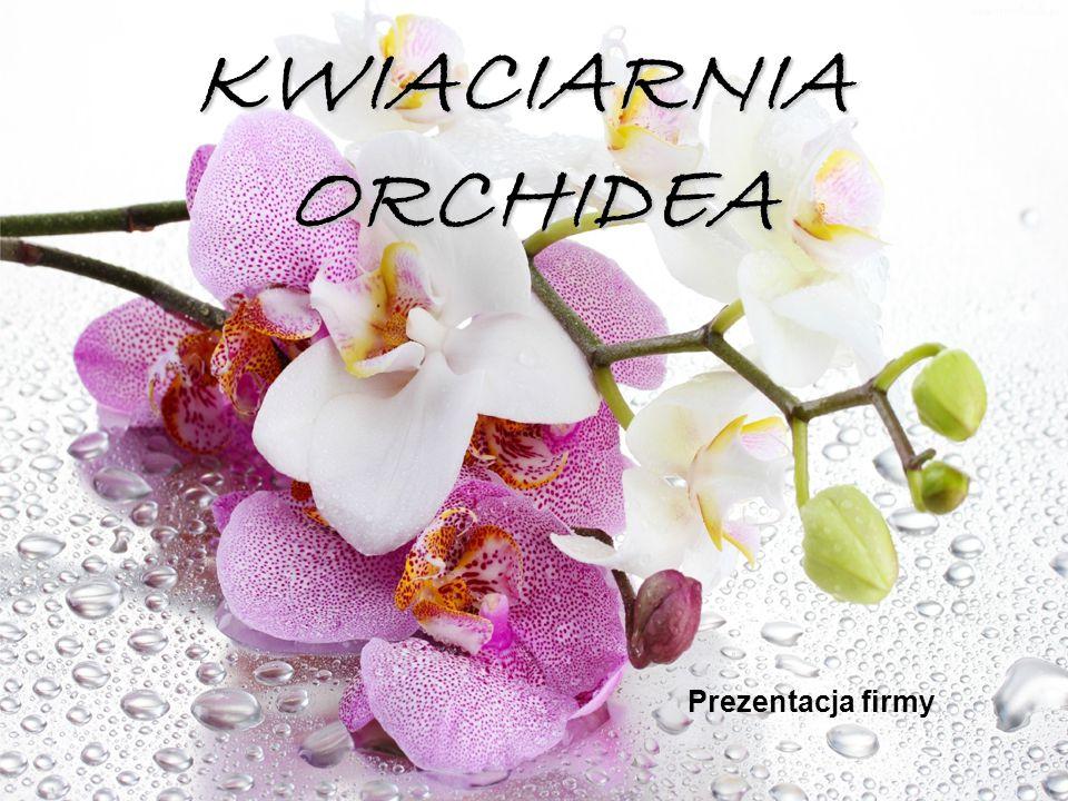 KWIACIARNIA ORCHIDEA Prezentacja firmy