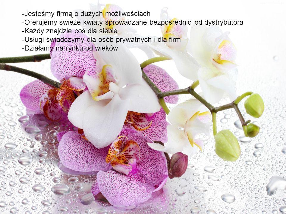 -Jesteśmy firmą o dużych możliwościach -Oferujemy świeże kwiaty sprowadzane bezpośrednio od dystrybutora -Każdy znajdzie coś dla siebie -Usługi świadc