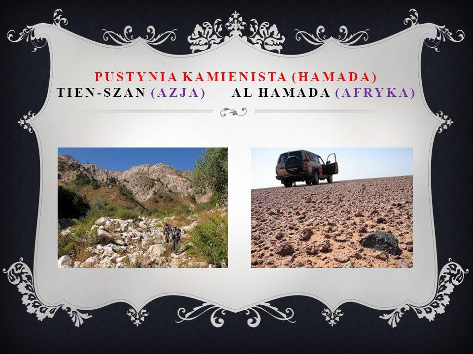 PUSTYNIA KAMIENISTA (HAMADA) TIEN-SZAN (AZJA) AL HAMADA (AFRYKA)