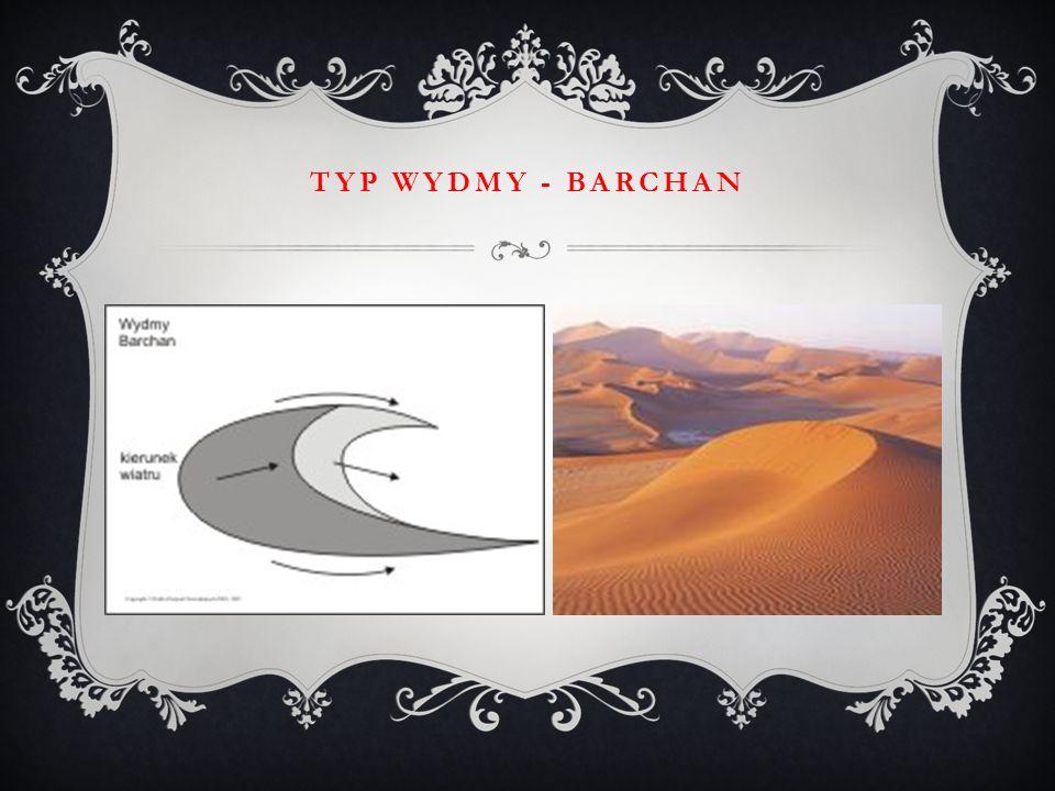 TYP WYDMY - BARCHAN