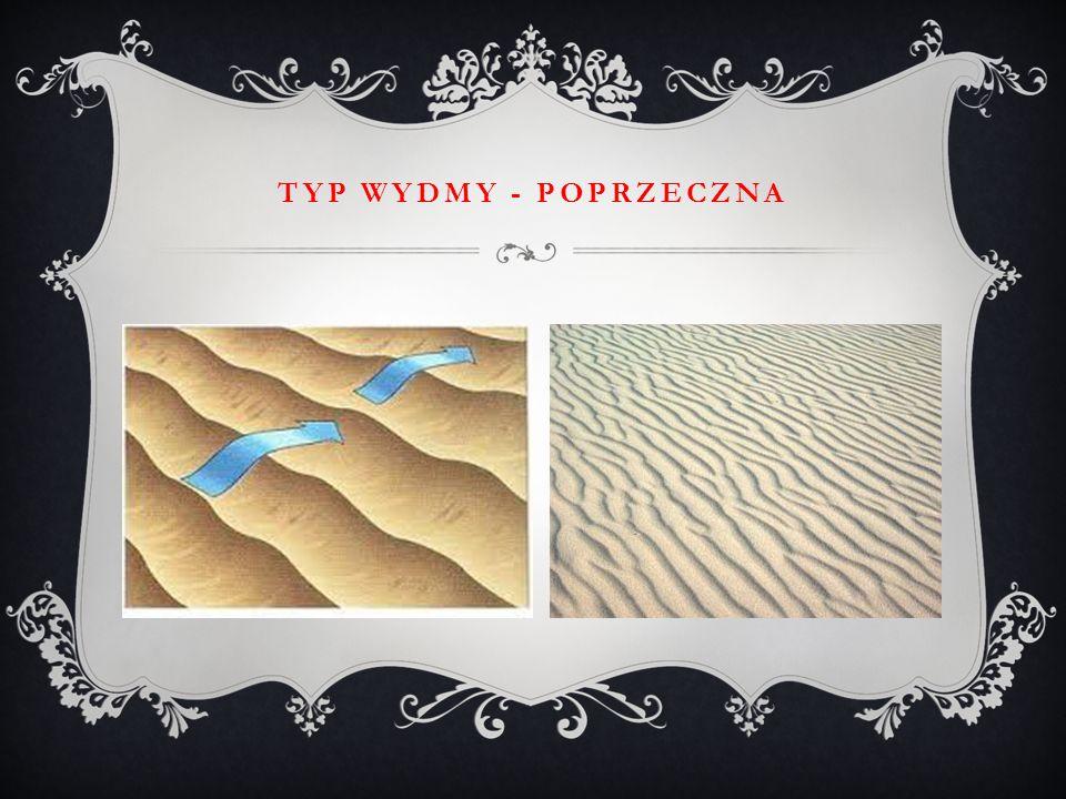 TYP WYDMY - POPRZECZNA