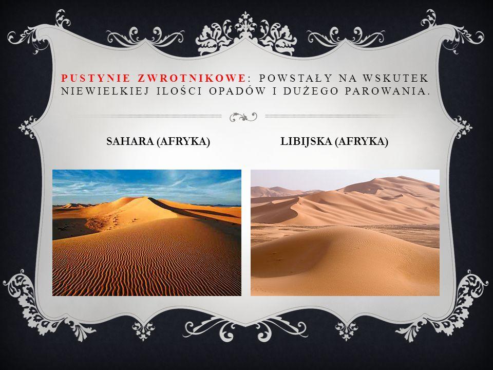 PUSTYNIE ZWROTNIKOWE: POWSTAŁY NA WSKUTEK NIEWIELKIEJ ILOŚCI OPADÓW I DUŻEGO PAROWANIA. SAHARA (AFRYKA) LIBIJSKA (AFRYKA)