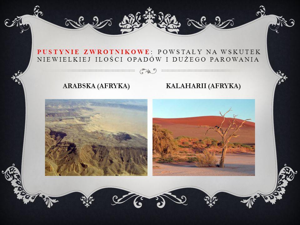 PUSTYNIE ZWROTNIKOWE: POWSTAŁY NA WSKUTEK NIEWIELKIEJ ILOŚCI OPADÓW I DUŻEGO PAROWANIA ARABSKA (AFRYKA) KALAHARII (AFRYKA)