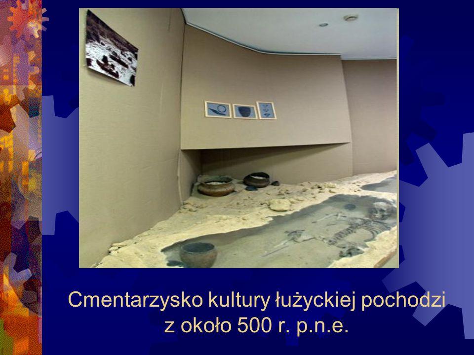 Cmentarzysko kultury łużyckiej pochodzi z około 500 r. p.n.e.
