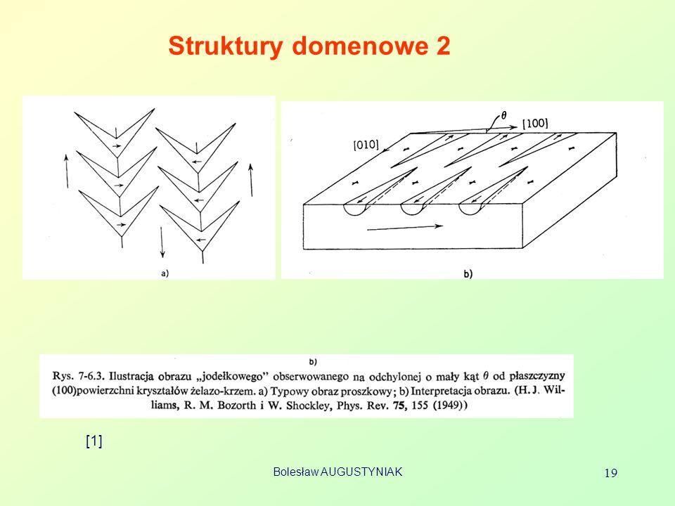 Bolesław AUGUSTYNIAK 19 Struktury domenowe 2 [1]
