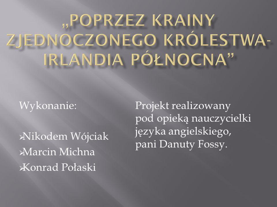 Wykonanie:  Nikodem Wójciak  Marcin Michna  Konrad Połaski Projekt realizowany pod opieką nauczycielki języka angielskiego, pani Danuty Fossy.