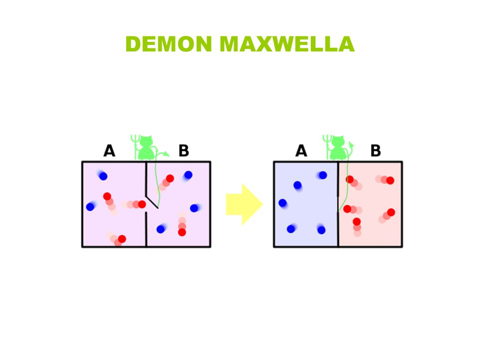 DEMON MAXWELLA