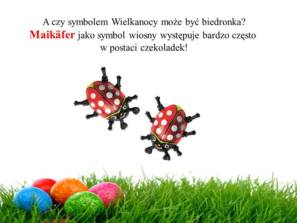 A czy symbolem Wielkanocy może być biedronka? Maikäfer jako symbol wiosny występuje bardzo często w postaci czekoladek!