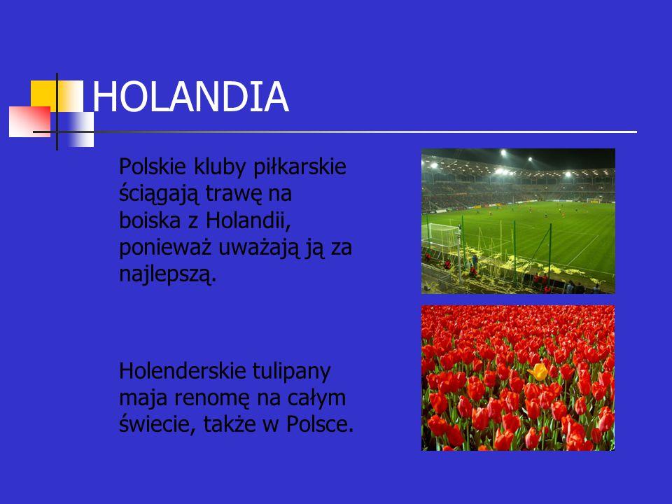HOLANDIA Polskie kluby piłkarskie ściągają trawę na boiska z Holandii, ponieważ uważają ją za najlepszą.