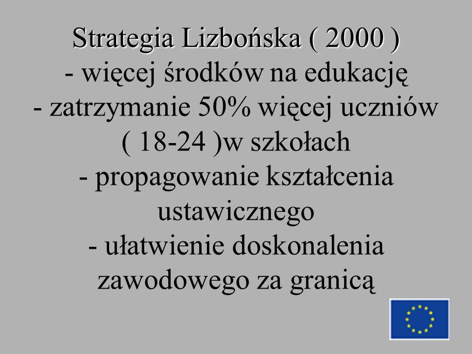 Strategia Lizbońska ( 2000 ) Strategia Lizbońska ( 2000 ) - więcej środków na edukację - zatrzymanie 50% więcej uczniów ( 18-24 )w szkołach - propagowanie kształcenia ustawicznego - ułatwienie doskonalenia zawodowego za granicą