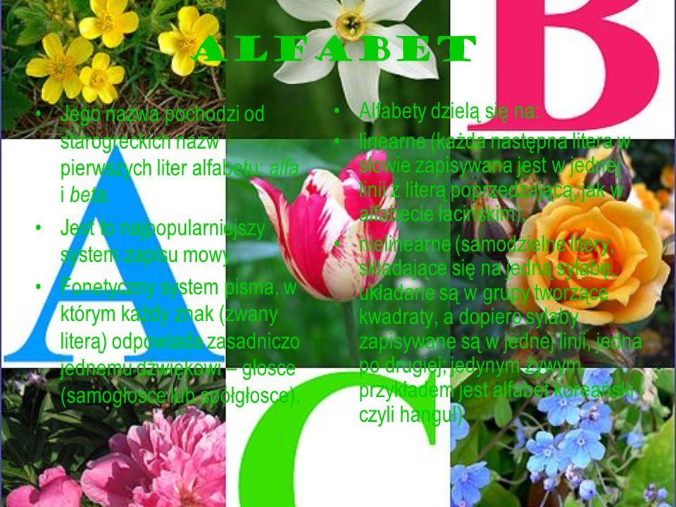 ALFABET Jego nazwa pochodzi od starogreckich nazw pierwszych liter alfabetu: alfa i beta. Jest to najpopularniejszy system zapisu mowy. Fonetyczny sys
