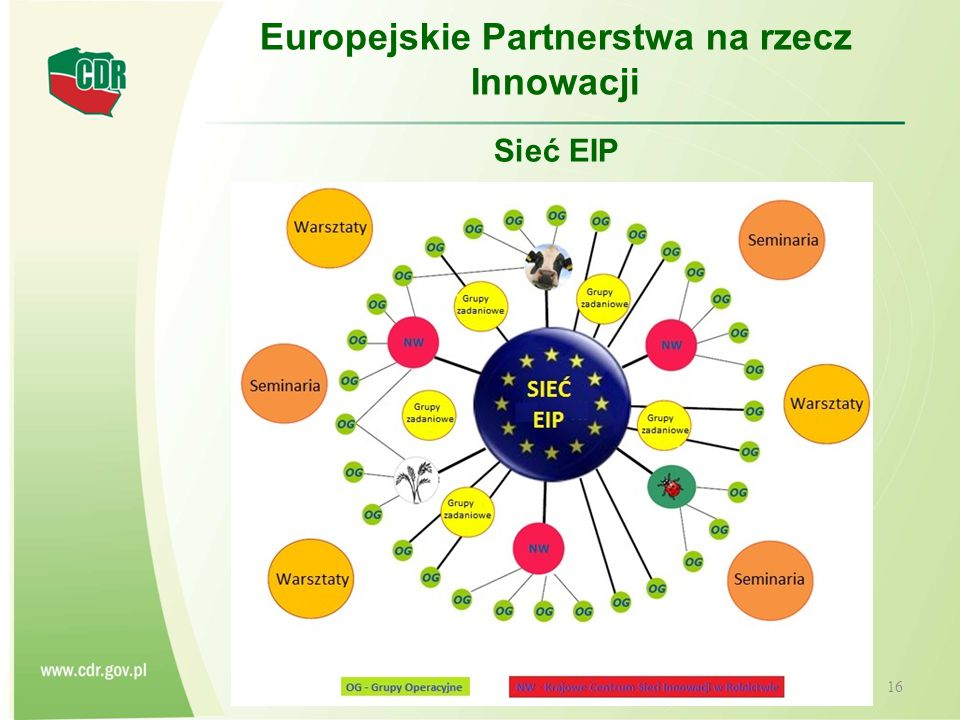 CENTRUM DORADZTWA ROLNICZEGO W BRWINOWIE 17 Europejskie Partnerstwa na rzecz Innowacji Sieć EIP