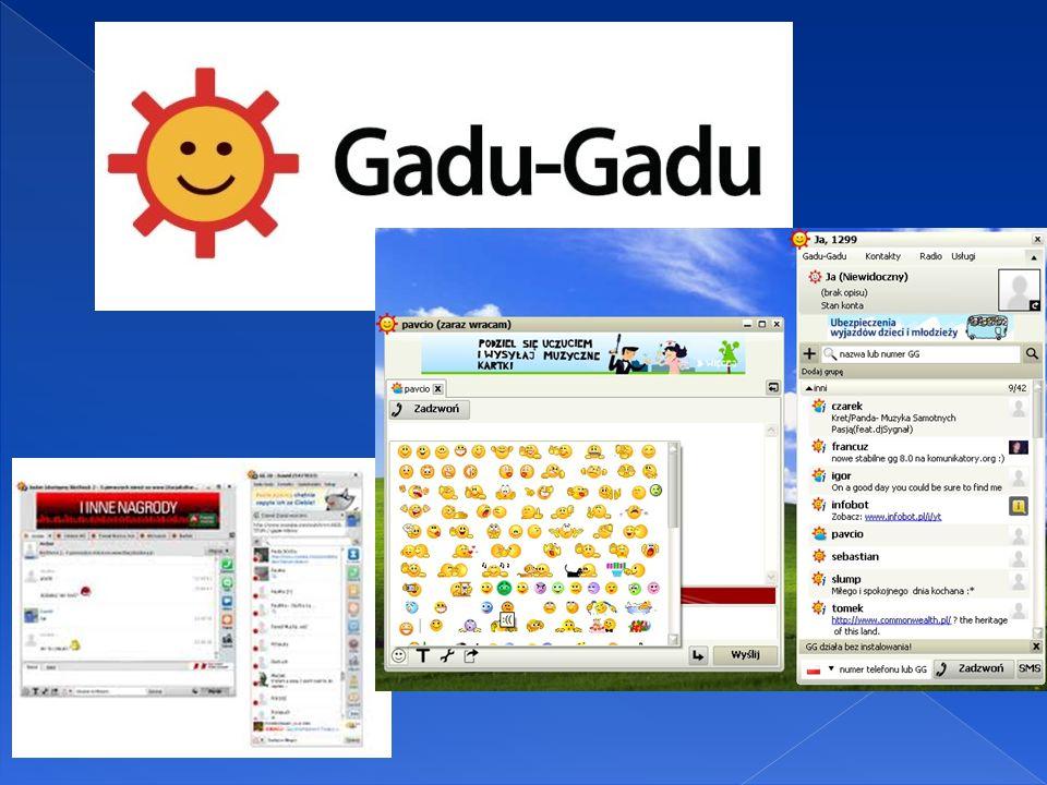  Program umożliwia prowadzenie rozmów w Internecie w czasie rzeczywistym oraz wysyłanie wiadomości tekstowych na telefony komórkowe.