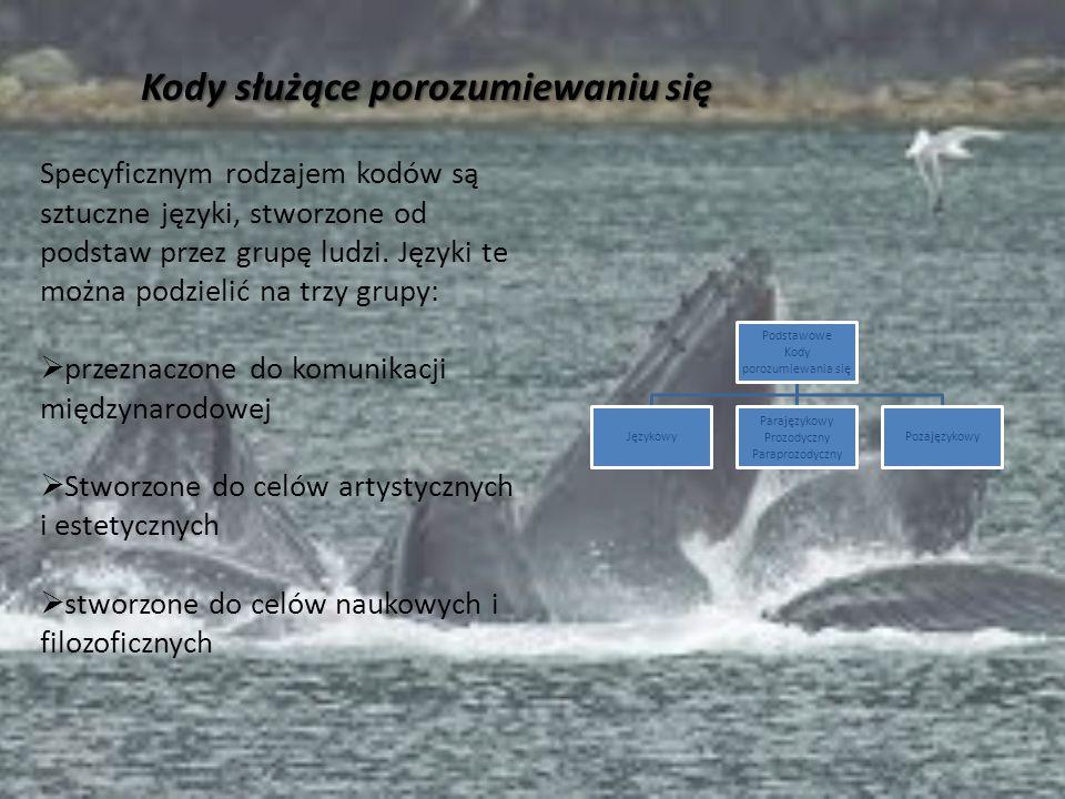 Podstawowe Kody porozumiewania się Językowy Parajęzykowy Prozodyczny Paraprozodyczny Pozajęzykowy Specyficznym rodzajem kodów są sztuczne języki, stwo