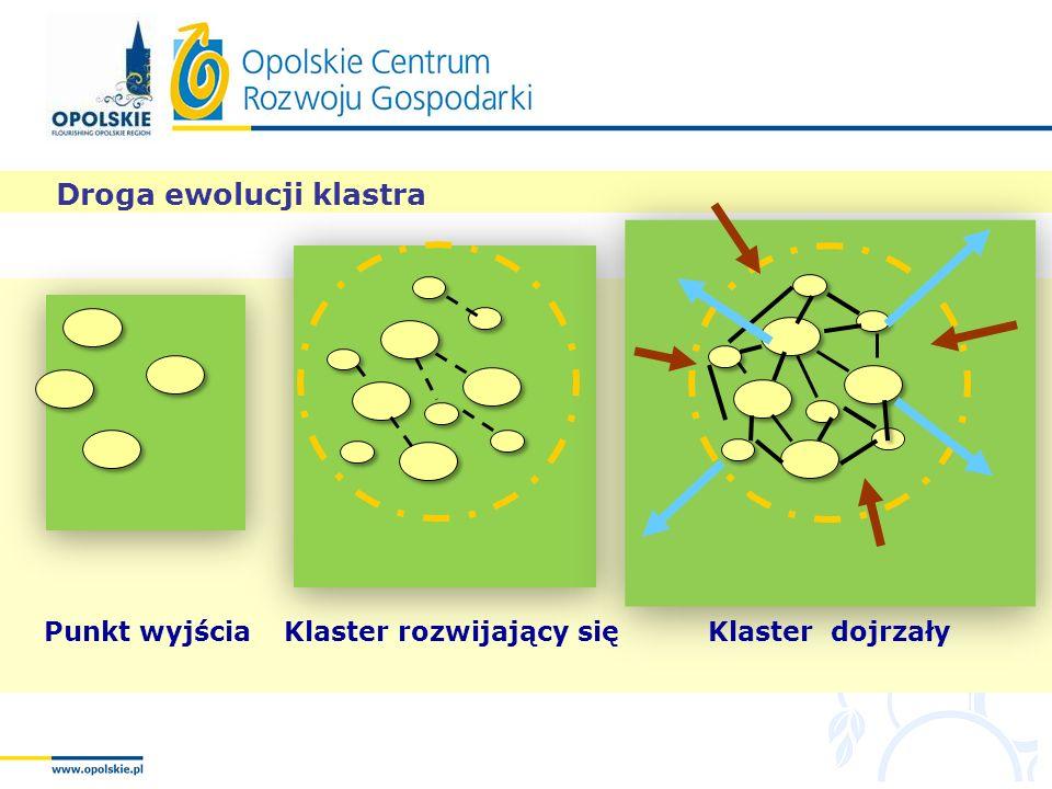 Droga ewolucji klastra Punkt wyjściaKlaster rozwijający sięKlaster dojrzały