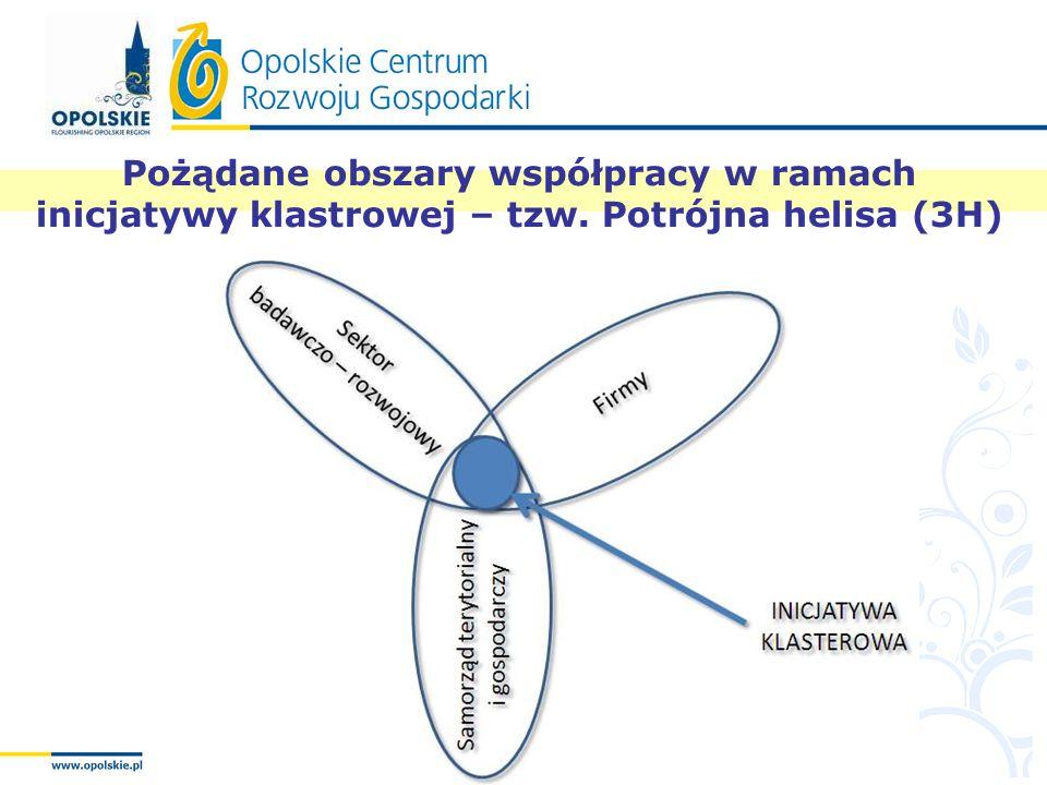Pożądane obszary współpracy w ramach inicjatywy klastrowej – tzw. Potrójna helisa (3H)