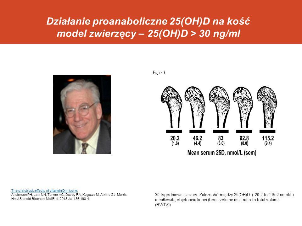 Działanie proanaboliczne 25(OH)D na kość model zwierzęcy – 25(OH)D > 30 ng/ml 30 tygodniowe szczury. Zalezność między 25(OH)D ( 20.2 to 115.2 nmol/L)