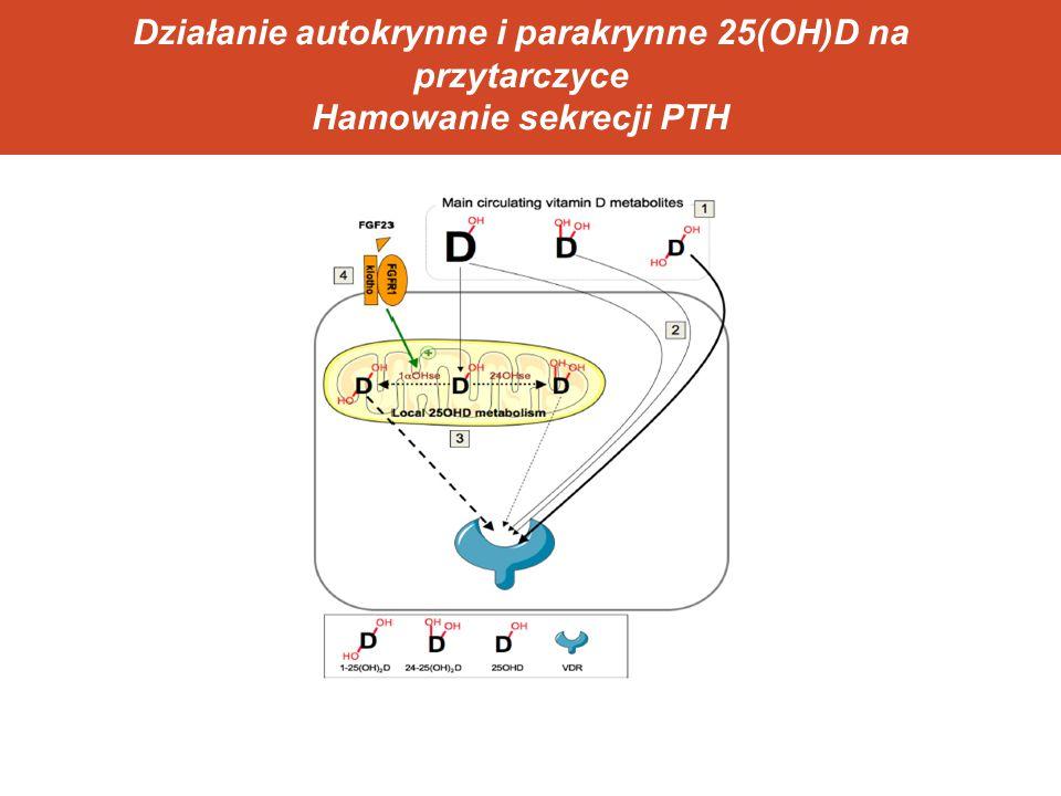 Działanie autokrynne i parakrynne 25(OH)D na przytarczyce Hamowanie sekrecji PTH