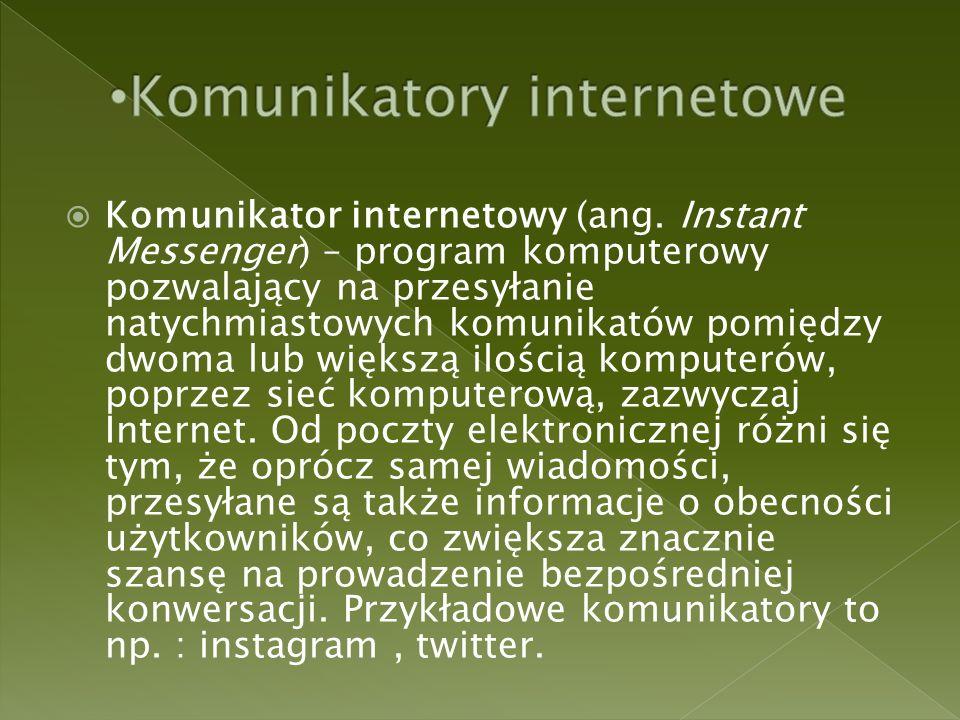  Komunikator internetowy (ang.
