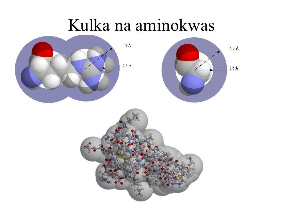 Kulka na aminokwas
