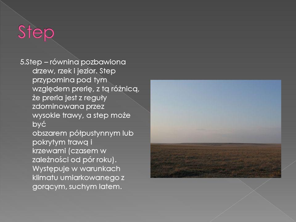 5.Step – równina pozbawiona drzew, rzek i jezior. Step przypomina pod tym względem prerię, z tą różnicą, że preria jest z reguły zdominowana przez wys