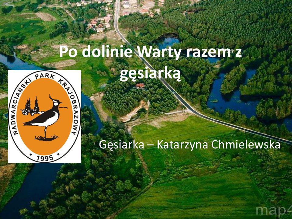 Po dolinie Warty razem z gęsiarką Gęsiarka – Katarzyna Chmielewska