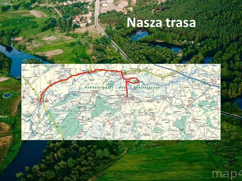 Jednodniowa wycieczka rowerowa Cele wycieczki 1.
