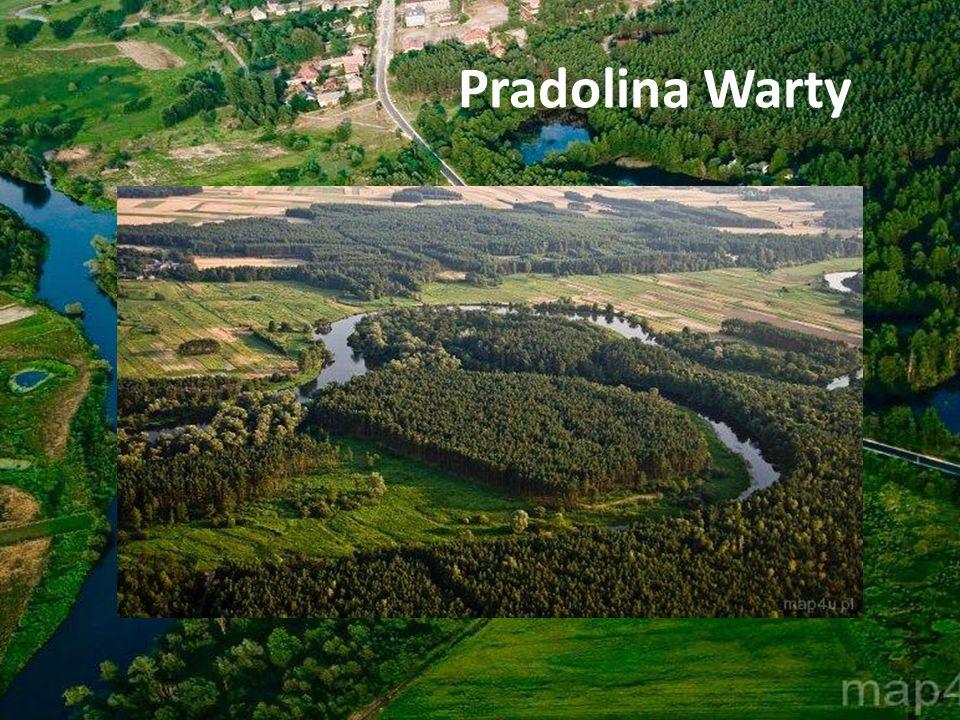 Pradolina Warty