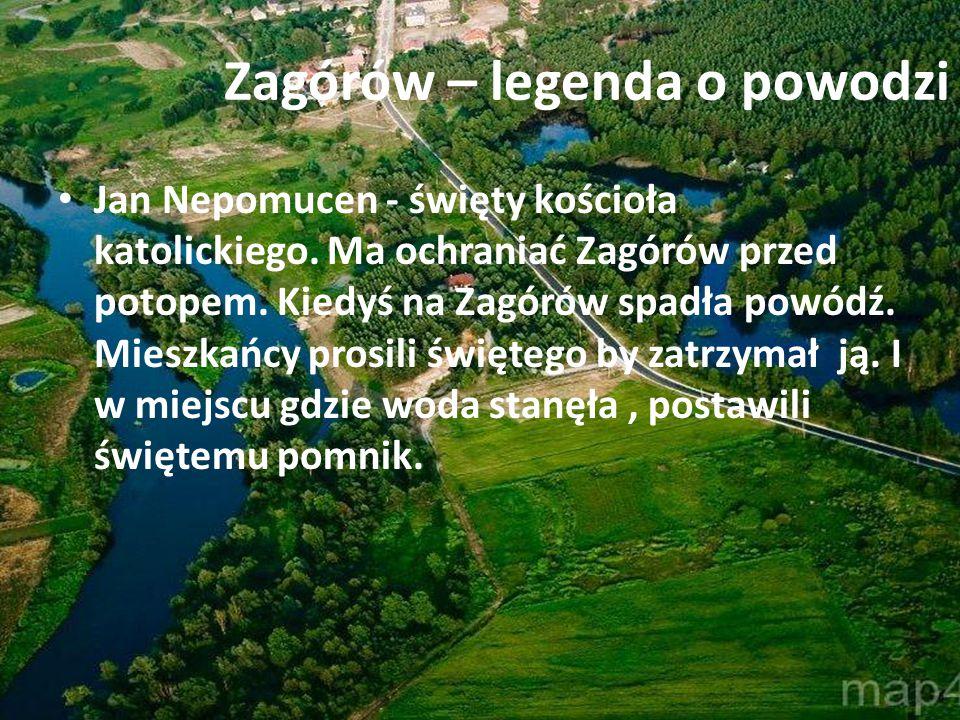 Gęsi zagórowskie Gęsi zagórowskie były znane w całej Wielkopolsce.