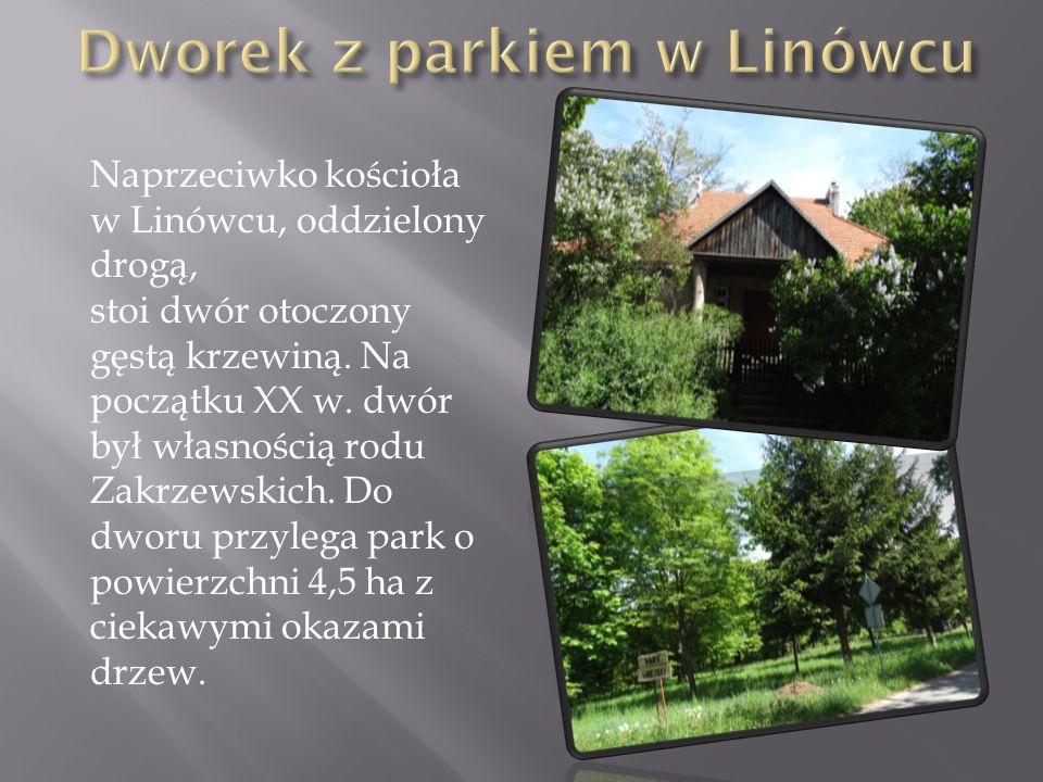Naprzeciwko kościoła w Linówcu, oddzielony drogą, stoi dwór otoczony gęstą krzewiną. Na początku XX w. dwór był własnością rodu Zakrzewskich. Do dworu