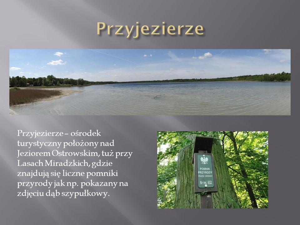 Przyjezierze – ośrodek turystyczny położony nad Jeziorem Ostrowskim, tuż przy Lasach Miradzkich, gdzie znajdują się liczne pomniki przyrody jak np. po