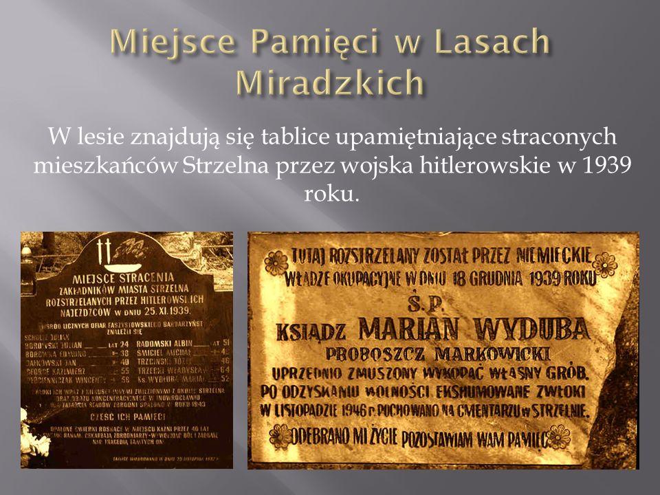 W lesie znajdują się tablice upamiętniające straconych mieszkańców Strzelna przez wojska hitlerowskie w 1939 roku.