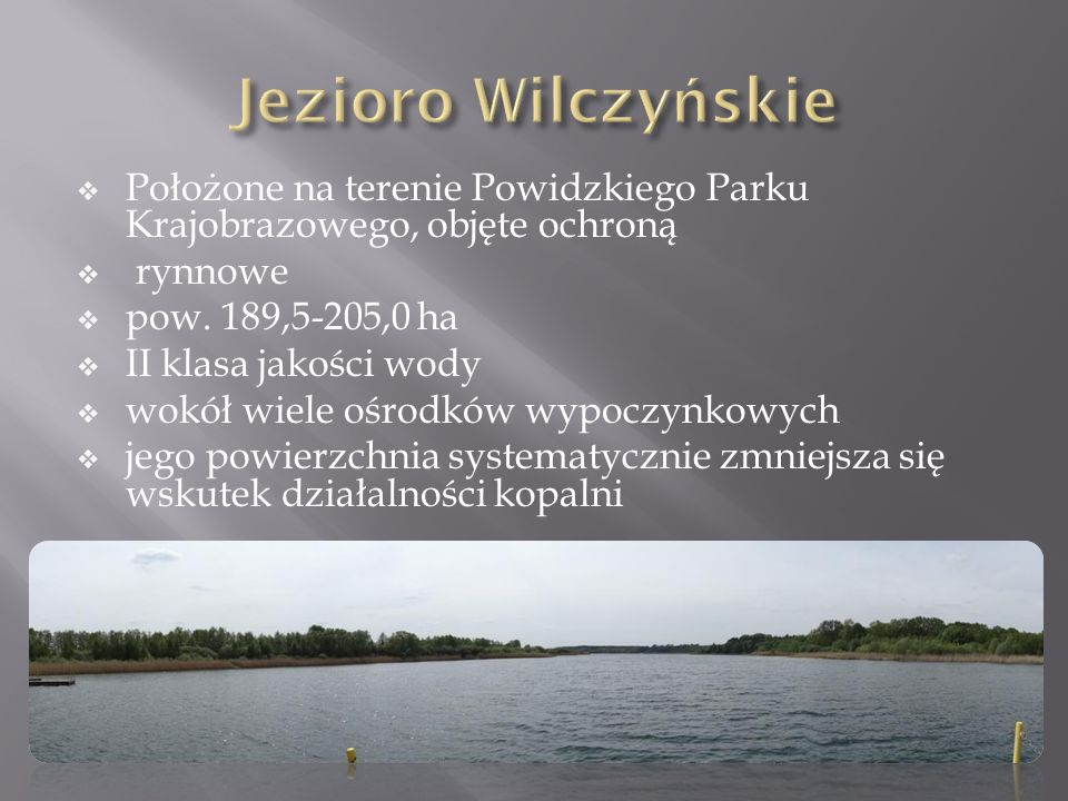 Położone na terenie Powidzkiego Parku Krajobrazowego, objęte ochroną  rynnowe  pow. 189,5-205,0 ha  II klasa jakości wody  wokół wiele ośrodków
