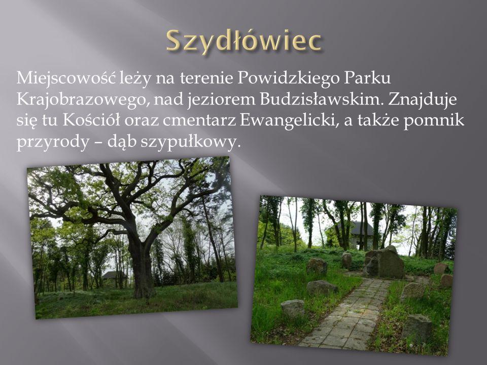 Miejscowość leży na terenie Powidzkiego Parku Krajobrazowego, nad jeziorem Budzisławskim. Znajduje się tu Kościół oraz cmentarz Ewangelicki, a także p