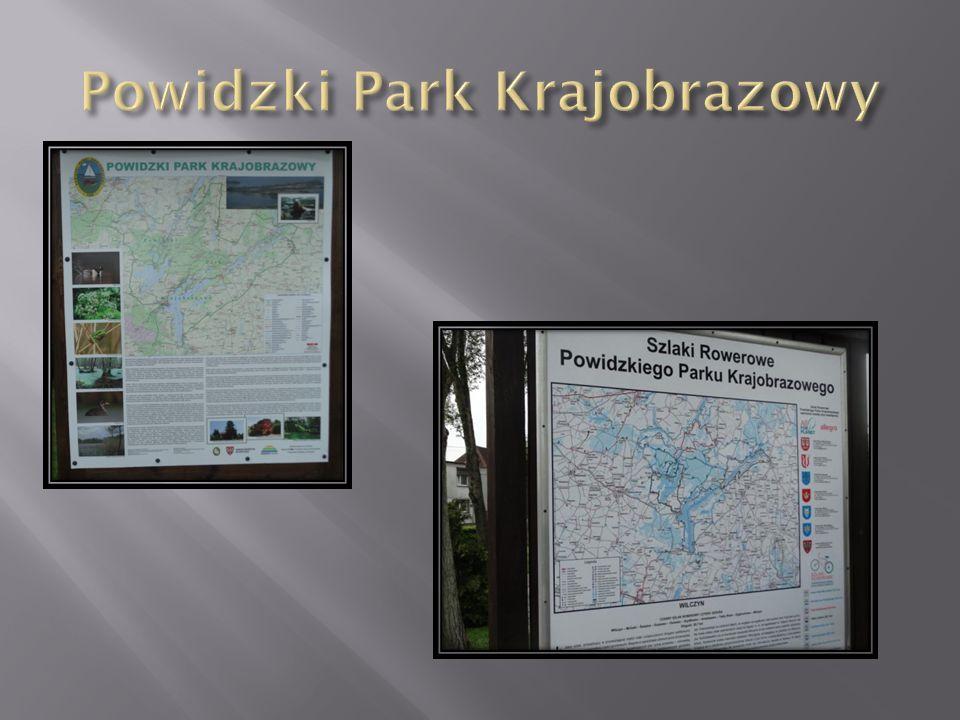 Główną atrakcją historyczną Powidzkiego Parku Krajobrazowego jest ukryty w lesie, otoczony bagnami i dodatkową fosą skansen archeologiczny w Mrówkach.