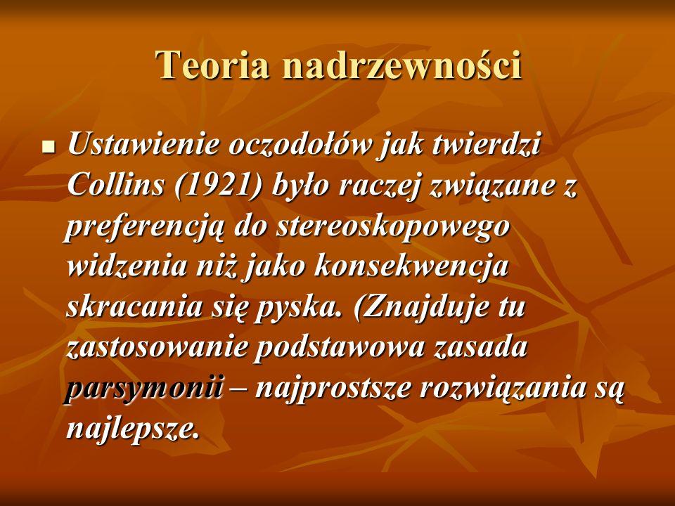 Teoria nadrzewności Ustawienie oczodołów jak twierdzi Collins (1921) było raczej związane z preferencją do stereoskopowego widzenia niż jako konsekwen