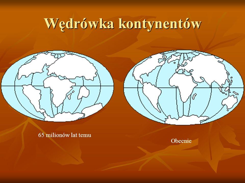 Czas w mln latEpoka 0202 Plejstocen 2525 Pliocen 5 25 Miocen 25 38 Oligocen 38 53 Eocen 53 65 Paleocen