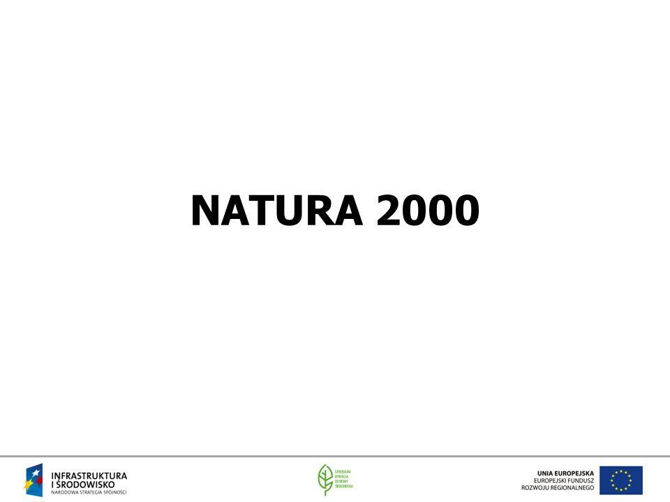 Przyczny utworzenia spadek różnorodności biologicznej oraz fragmentacja ekosystemów negatywne skutki dla przyrody i społeczeństwa rozwój ochrony przyrody różny w różnych krajach członkowskich idea spójnej sieci Natura 2000 w skali UE wyznaczone w ramach dyrektyw: ptasiej i siedliskowej obszary specjalnej ochrony ptaków (OSO) oraz specjalne obszary ochrony siedlisk (SOO)