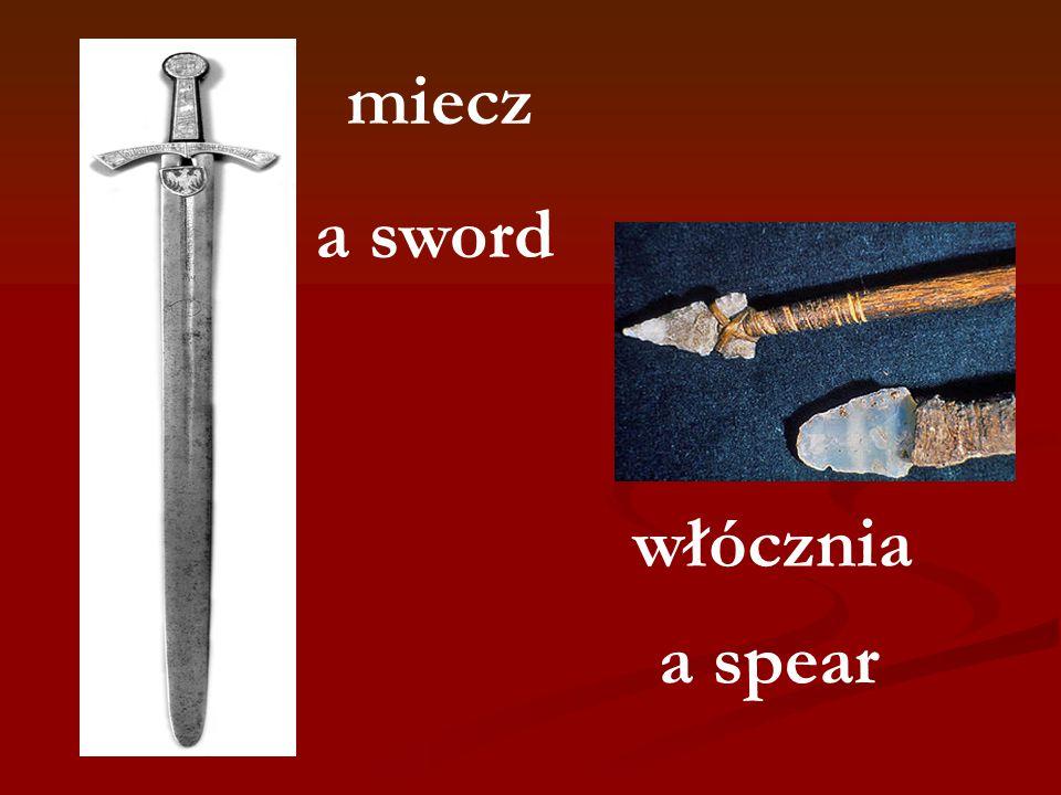 miecz włócznia a sword a spear