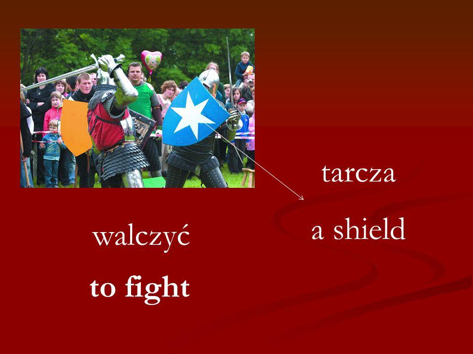 walczyć tarcza a shield to fight