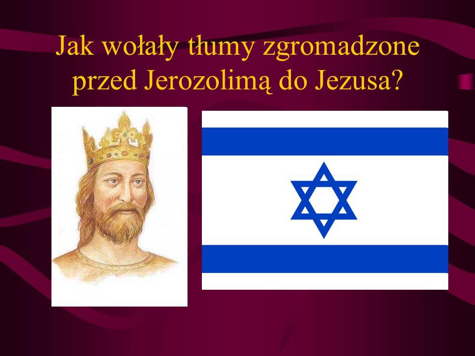 Jak wołały tłumy zgromadzone przed Jerozolimą do Jezusa?