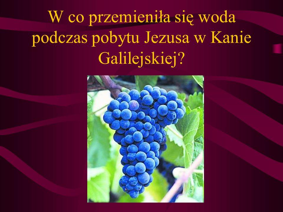 W co przemieniła się woda podczas pobytu Jezusa w Kanie Galilejskiej