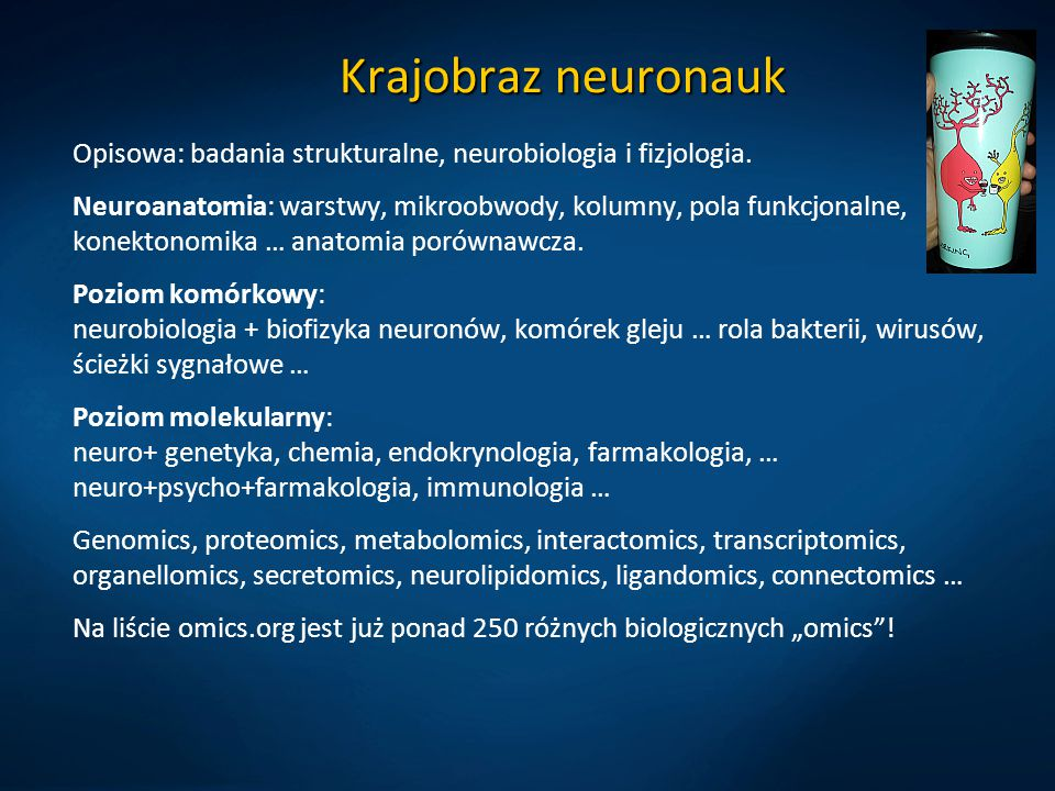 Krajobraz neuronauk Opisowa: badania strukturalne, neurobiologia i fizjologia.