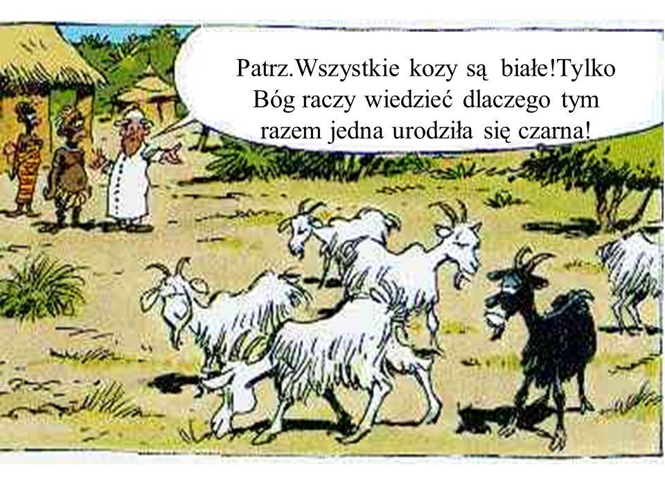 Patrz.Wszystkie kozy są białe!Tylko Bóg raczy wiedzieć dlaczego tym razem jedna urodziła się czarna!
