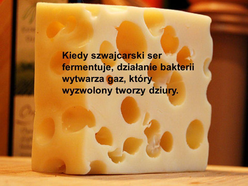 Kiedy szwajcarski ser fermentuje, działanie bakterii wytwarza gaz, który wyzwolony tworzy dziury.