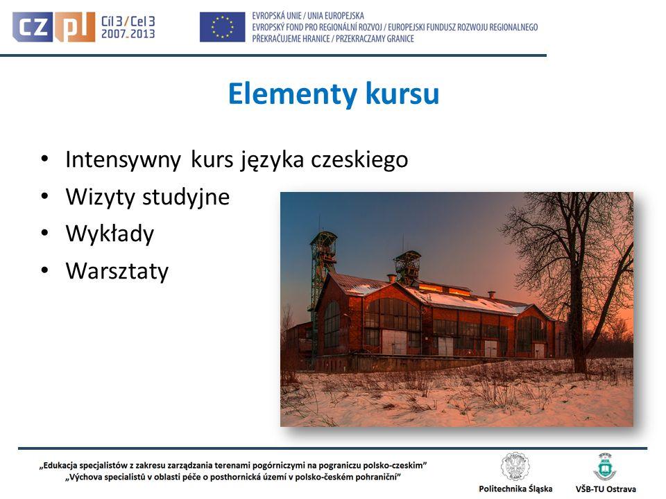 Elementy kursu Intensywny kurs języka czeskiego Wizyty studyjne Wykłady Warsztaty