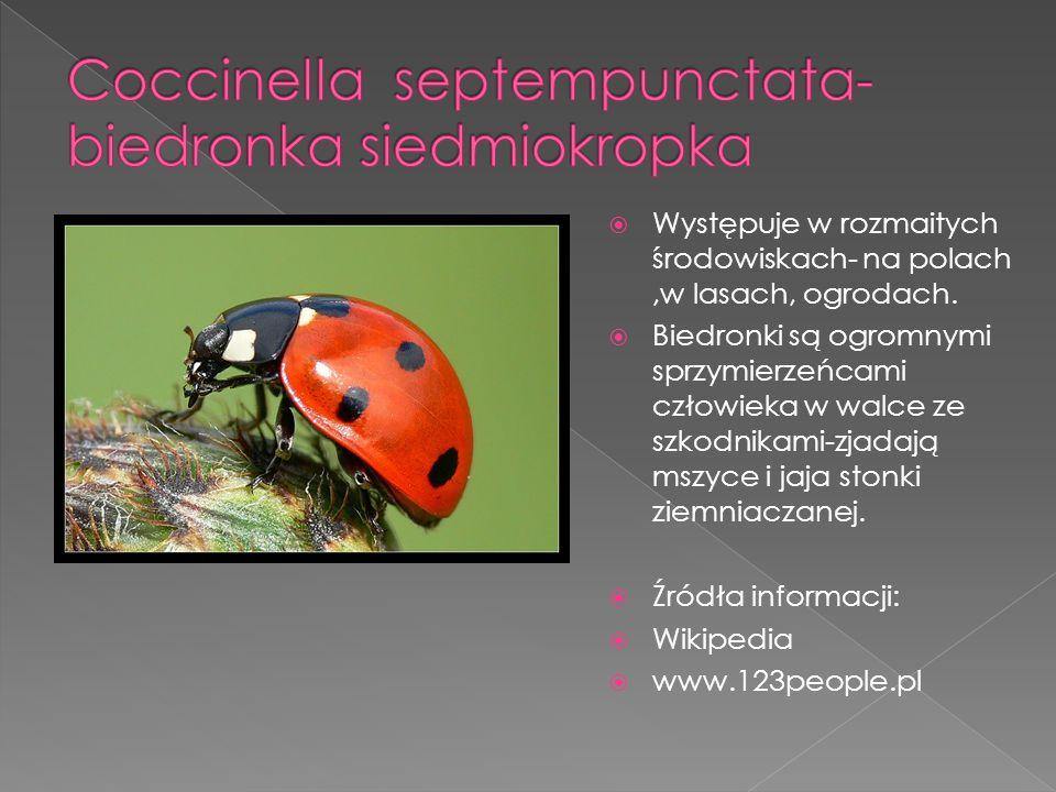  W Polsce spotykany jest najliczniej na południu, głównie na porośniętych wysoką trawą, zarówno suchych, jak i wilgotnych łąkach, nieużytkach, skrajach młodników nad brzegami zbiorników wodnych, a nawet w ogrodach, bardzo często występuje na krzewach owocowych, takich jak malina.