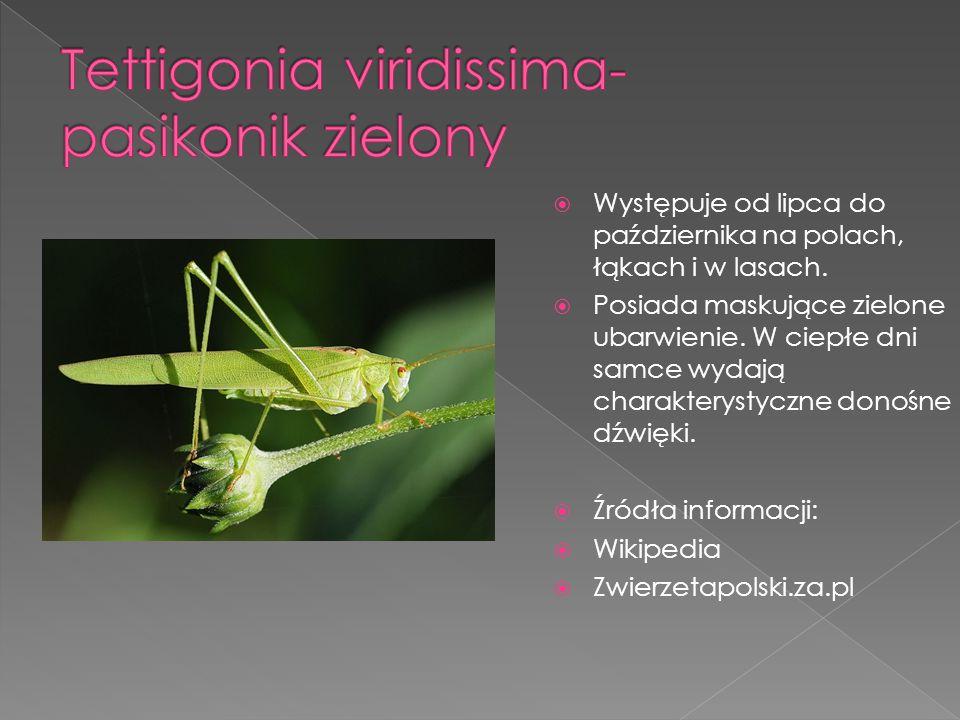  Występuje w rozmaitych środowiskach- na polach,w lasach, ogrodach.